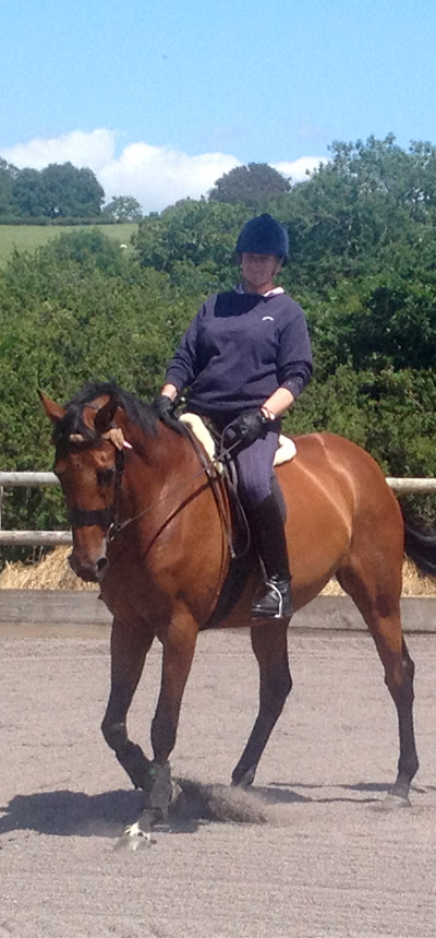 BHS Approved Riding Lessons Barnstaple North Devon